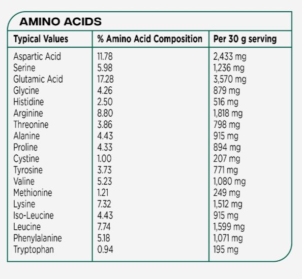 VO2 Sport Športna Prehrana - plant based veganski proteini beljakovine aminokisline